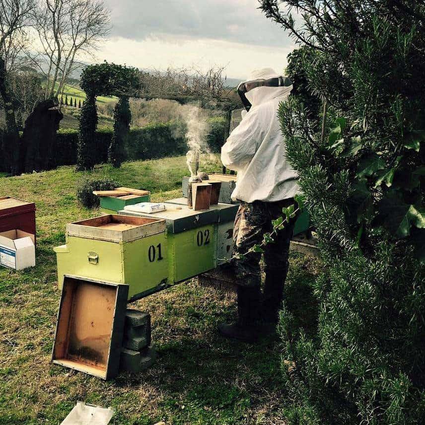 produttori di miele in toscana